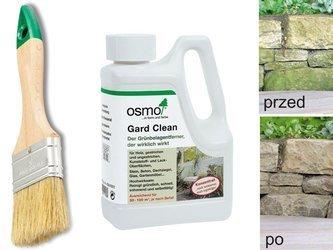 OSMO 6606 środek do usuwania zielonego nalotu mchu
